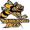 Bracknell_Bees_logo