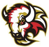 LogoBasingstokeBison