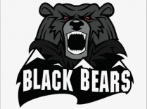 The Berkshire Black Bears will be the first team playing in the NAPHL, located in North Adams, Massachusetts.